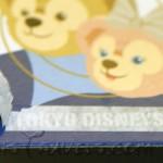 "Underneath the ""Disney Parks"" sticker it says ""Tokyo DisneySea"""